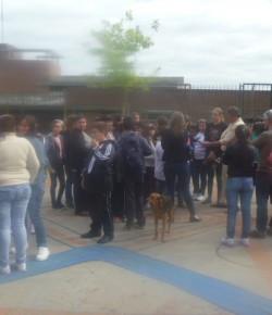 Liceo 50 – Continúa la medida de ocupación – 24/03/15