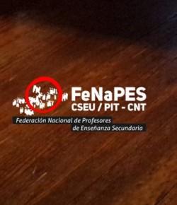 Informe del Comité Ejecutivo de FENAPES a las filiales