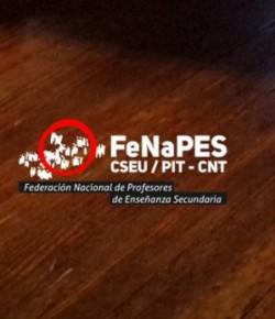Informe de la reunión bipartita FENAPES – CES del día viernes 18 de marzo