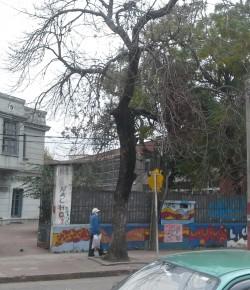 Núcleo Sindical del Liceo 23 denuncia autoridades por desconocimiento de la actividad sindical