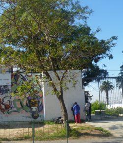 Núcleo Sindical del Liceo 72 solicita horas de apoyo a la Dirección del Centro