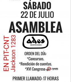 Asamblea General de ADES Montevideo: Sábado 22, Hora 18 (segundo llamado), Local del PIT-CNT