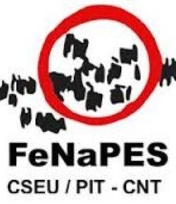 Informe de la Bipartita FENAPES- CES del martes 15 de agosto sobre concursos y elección de horas